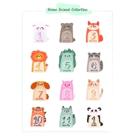 Baby bodysuits set 12 - home animal