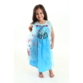 Elsa costume dress - blue