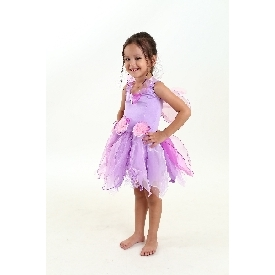Fairy purple costume dress