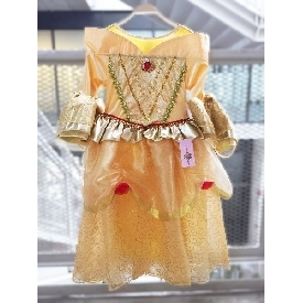 Gaby belle golden dress 1800b