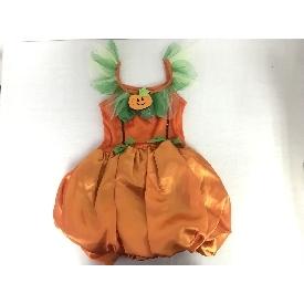 Fh1607 little pumpkin
