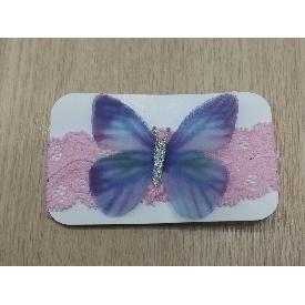 Fh1910 baby papillon