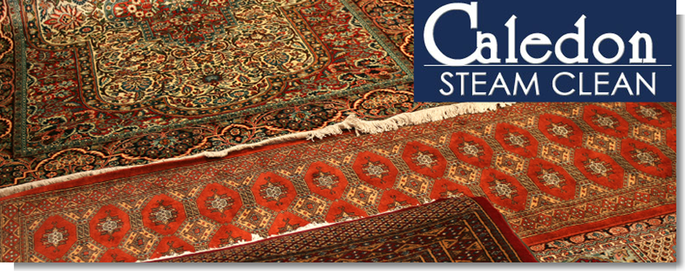 rug cleaning Brampton