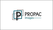 Propac Images - Home Decorative Accessories