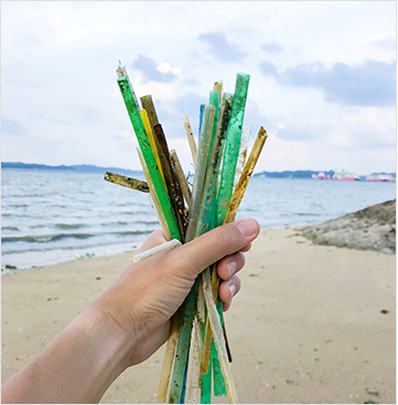 Eco-Friendly Biodegradable Paper Drinking Straws Canada USA