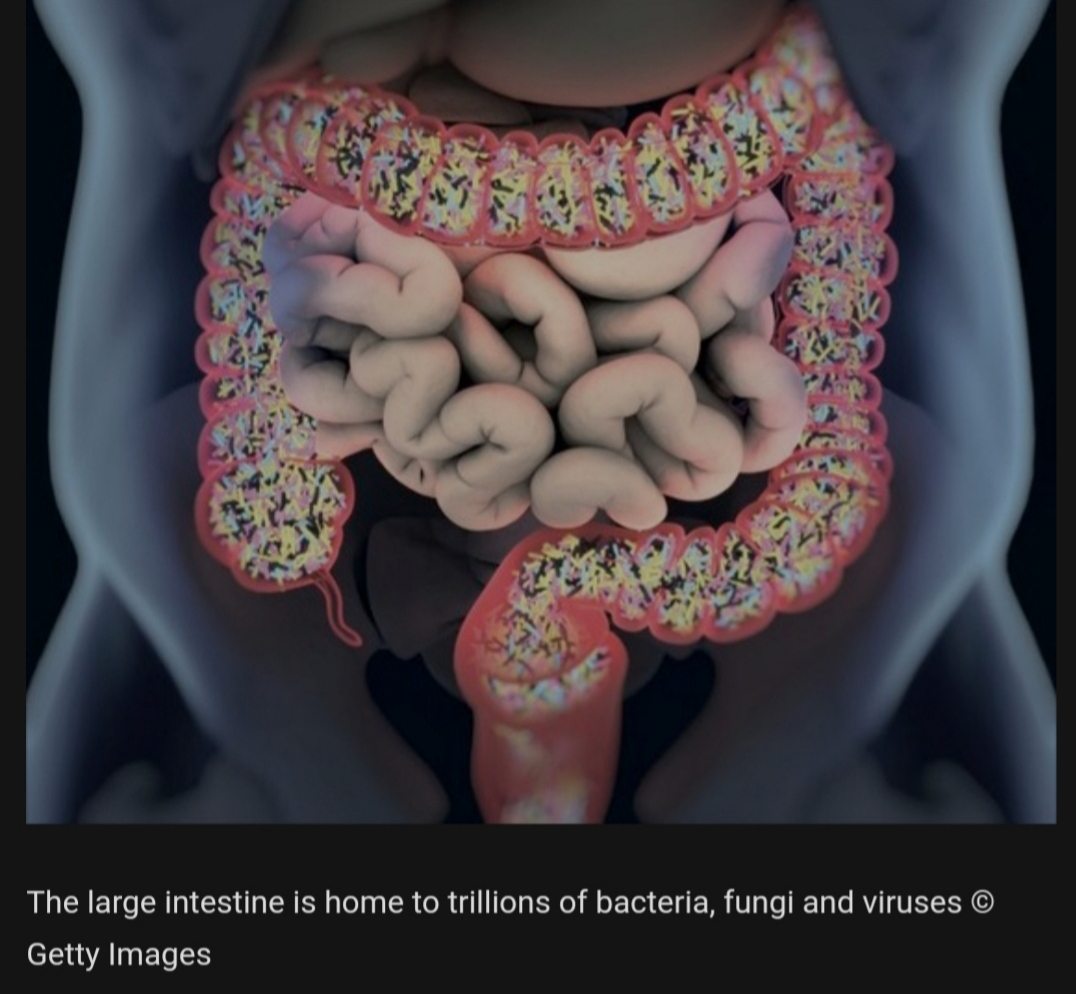 Microbiome Focuses