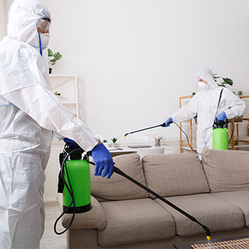 COVID 19 Cleaning and Disinfecting Newburgh, New York