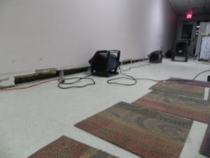 Carpet Cleaning Melbourne FL