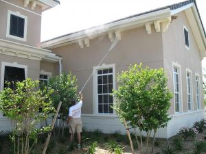 House Pressure Washing and Spider Web Removal