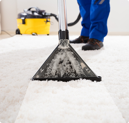 Carpet Cleaning Anmore