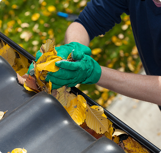 Gutter Cleaning Port Moody