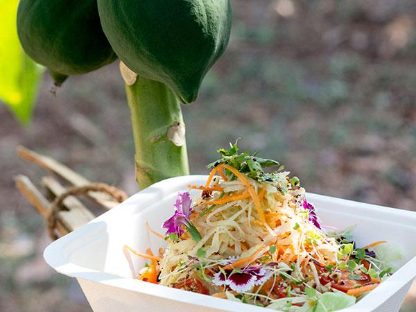The Green Papaya & Daikon Salad