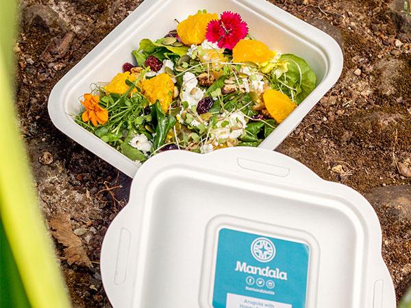 The Honey Balsamic Arugula Salad