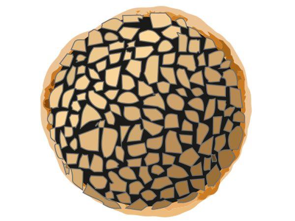 Truffle Kulcha [2 Pcs]