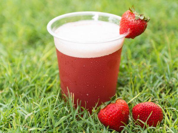 Vegan Strawberry Smoothie [10 Oz]