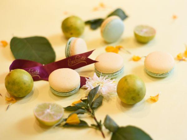 Lime Basil Macaron