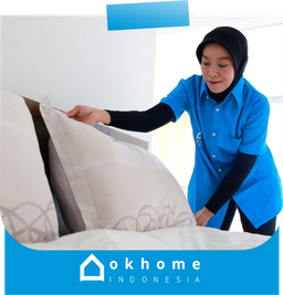 okhome cleaning solution illustration