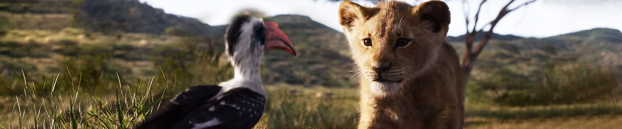 the lion king  jul 2019  movie tickets online booking  showtimes in kolkata  paytm com