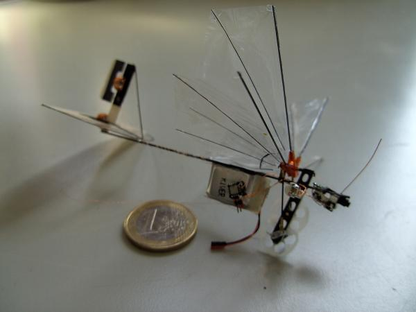 Mico-Flying-Robots