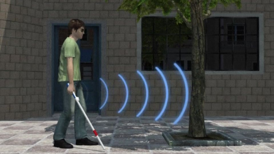 Smart Walking Cane