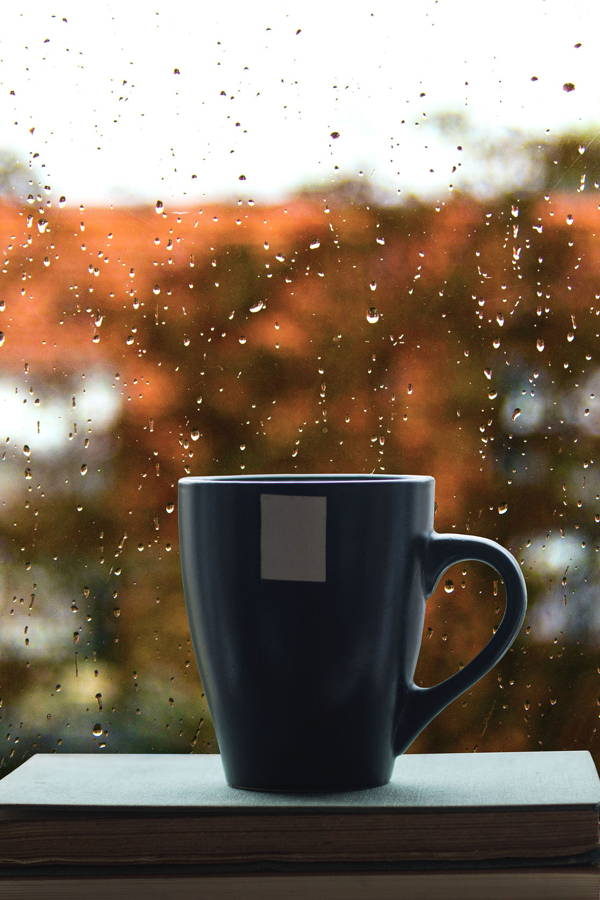 Is Your Home Ready for Rain and Winter?