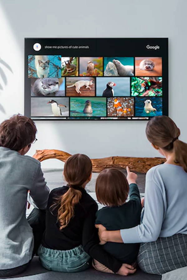 With This TV in Your Home Theatre, You May Never Leave Your Couch