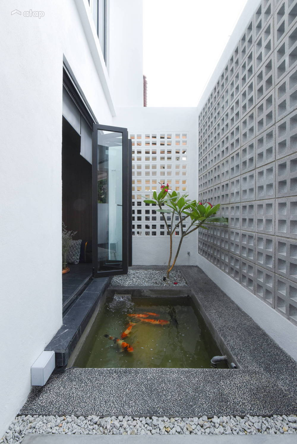 terrace home pond