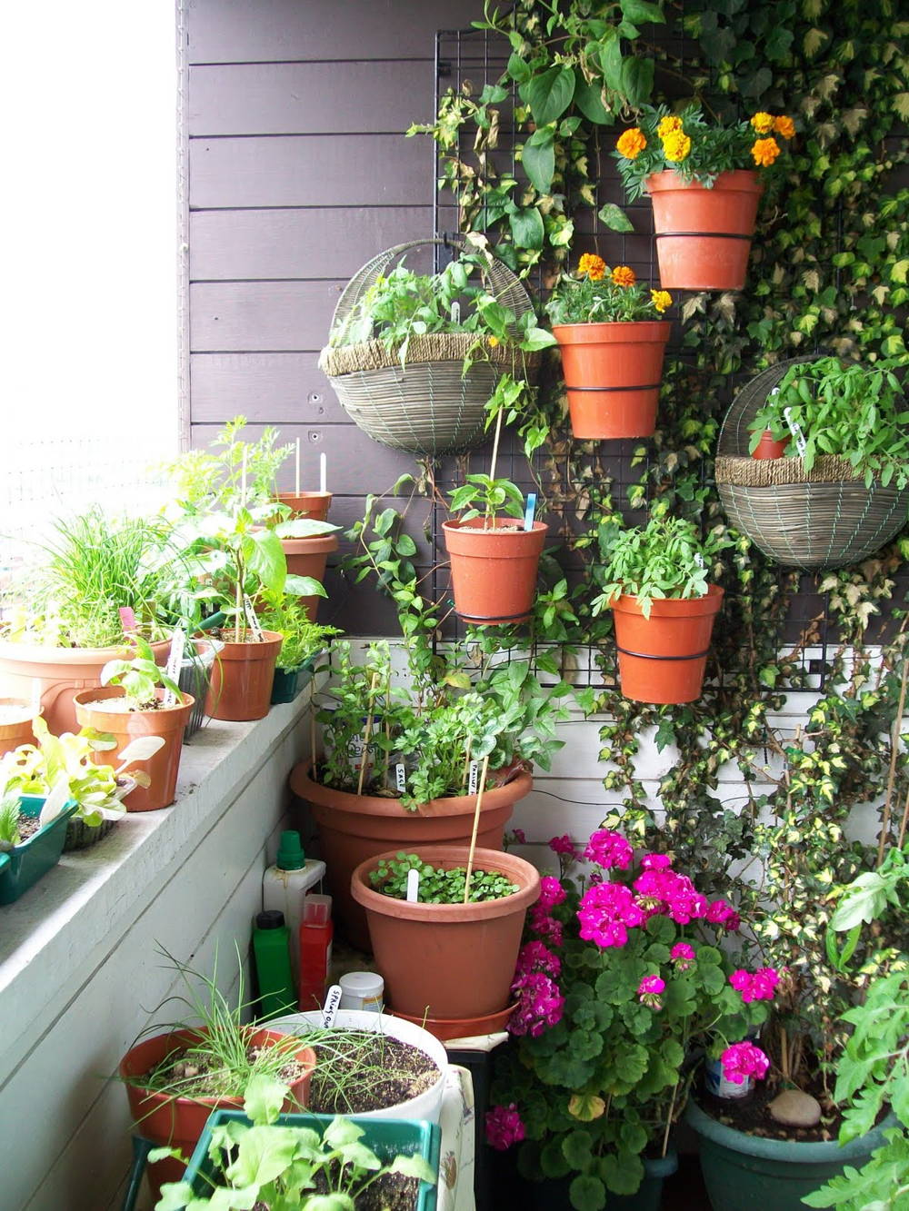balcony garden home