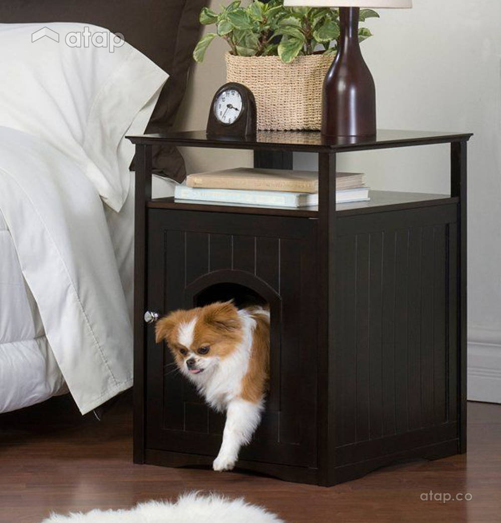 indoor pet spaces