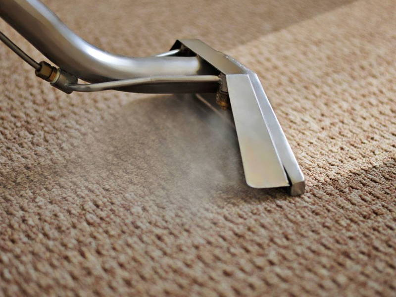 Steam clean rug