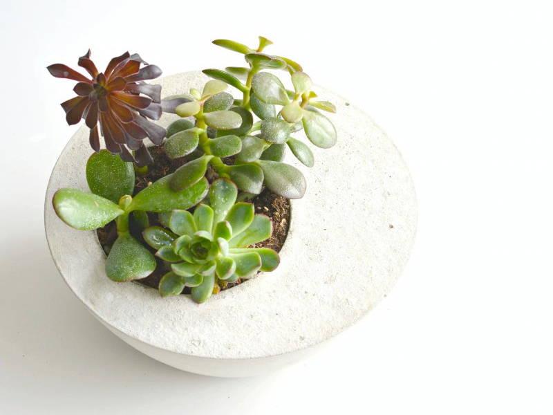 concrete planter handmade