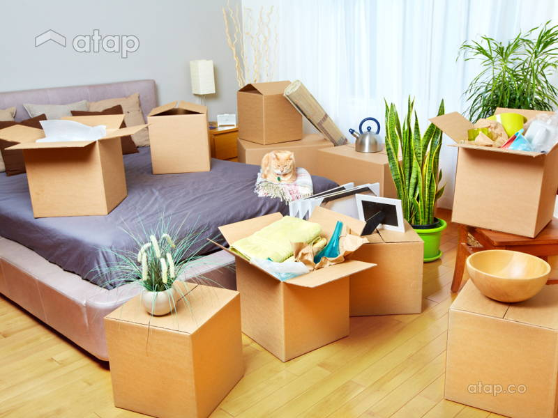 Effective Tips that Will Make Moving Easier