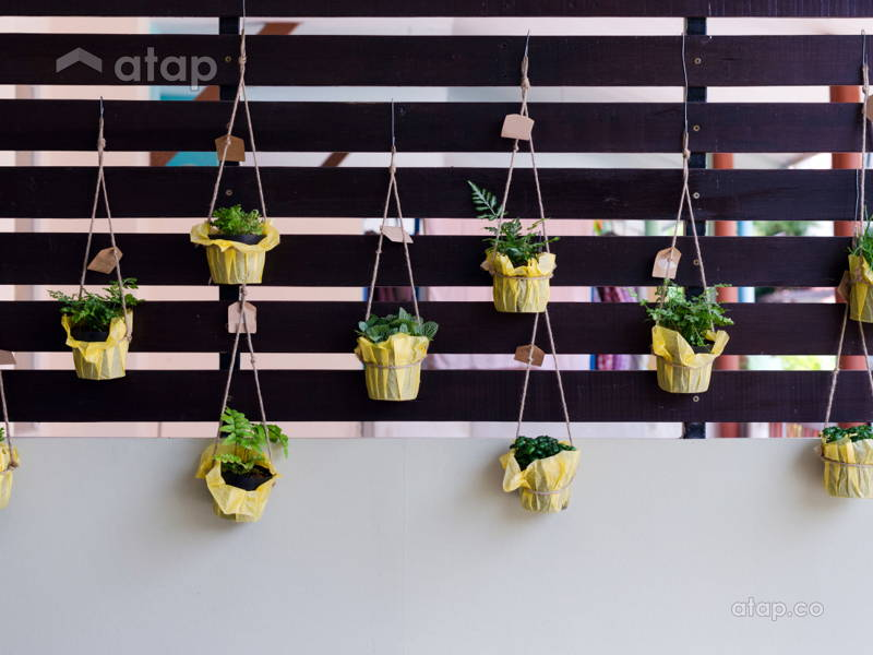Turn Your Balcony into a Green Haven
