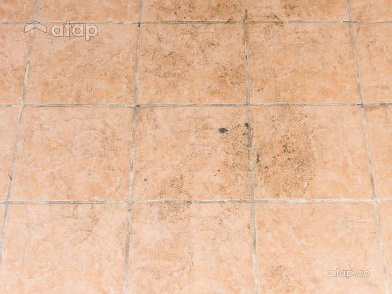 mouldy kitchen tiles