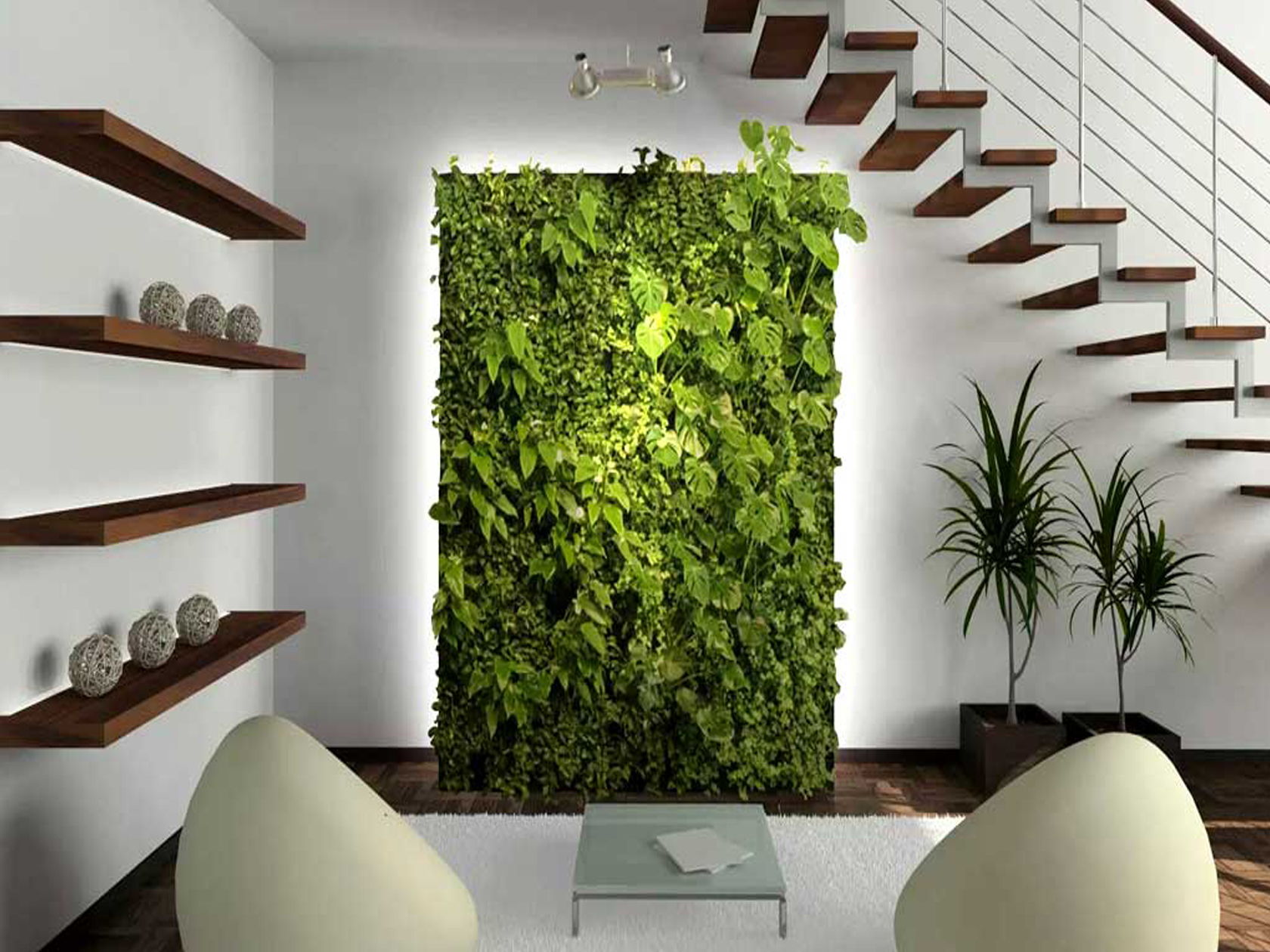 dumb cane home wall