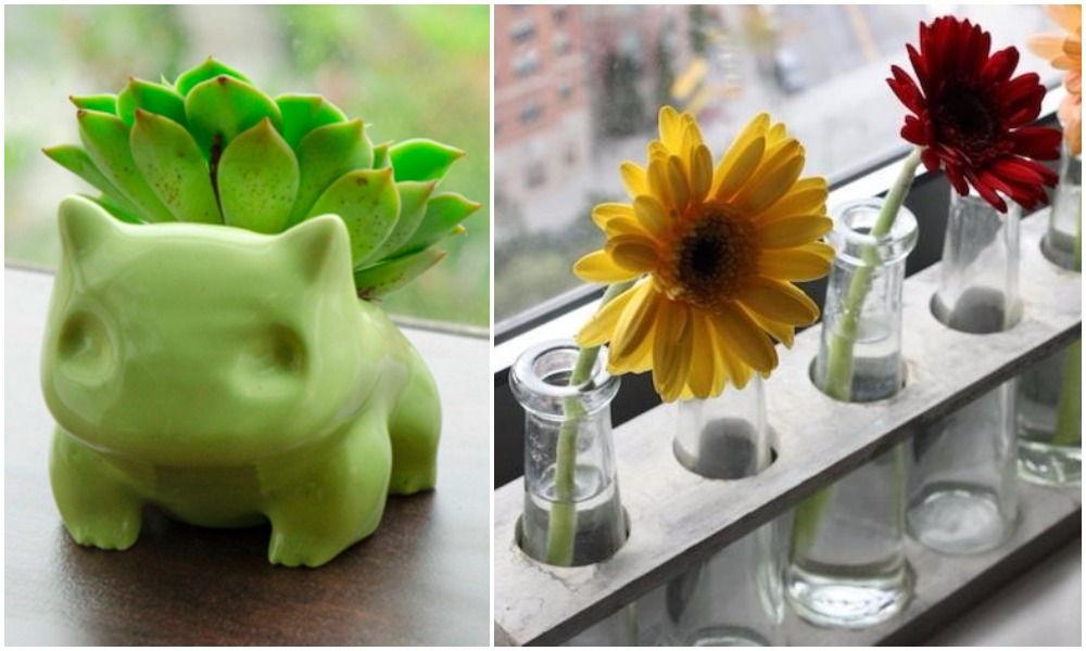 creative plant holder