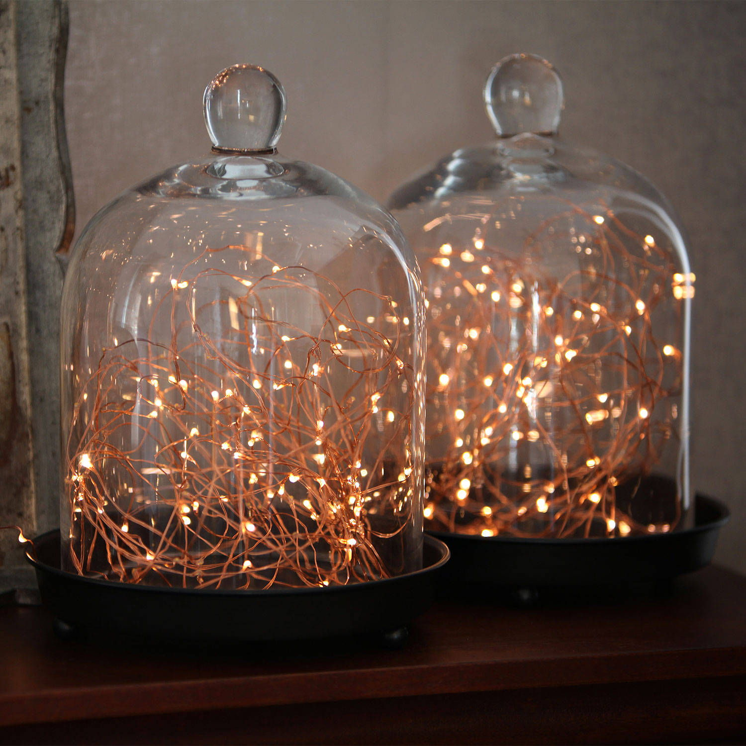 Fairy lights glass case