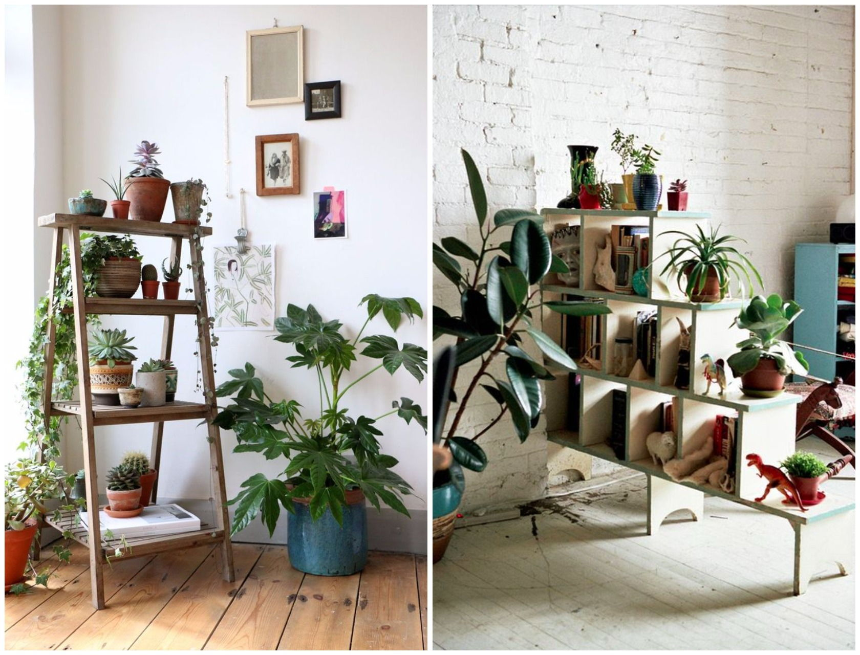 indoor plant decor