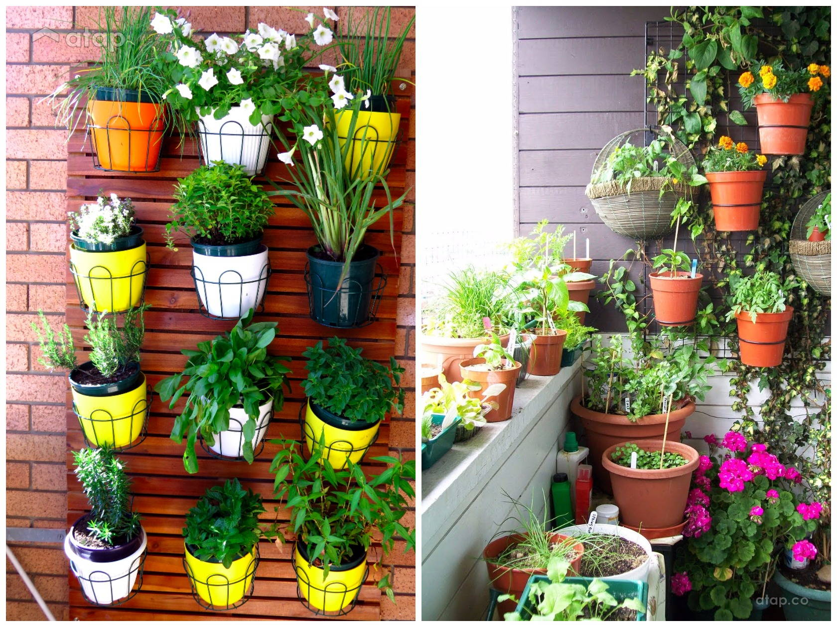 Why size doesn 39 t matter 22 fun ideas for small balconies for Best plants for small balcony
