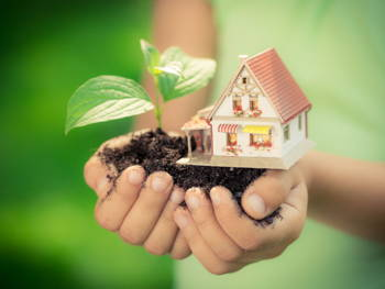 7 Eco-Friendly Building Materials for Your Next Home Renovation