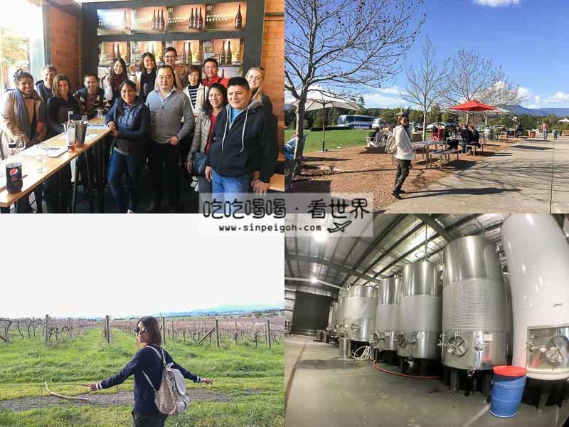 yarra river wine tasting tour
