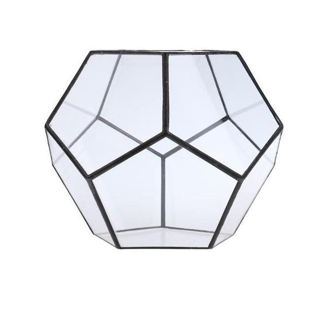 Terrarium Hexagon Glass Vase
