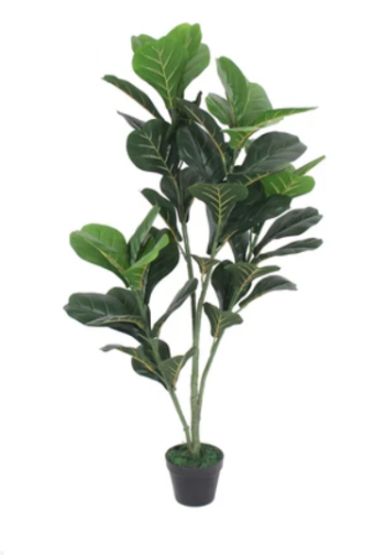 Artificial Fiddle Fig 120cm (Medium Grade)