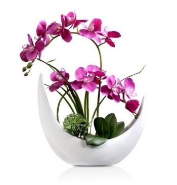 Orchid with Half Moon Shape Vase