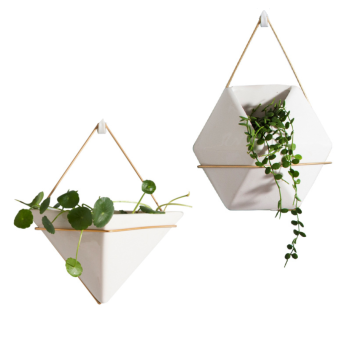 Wall Planter with Gold Wire Holder