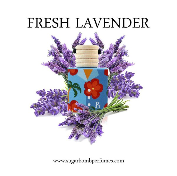 Fresh Lavender Indoor Perfume  - Sugarbomb Perfumes