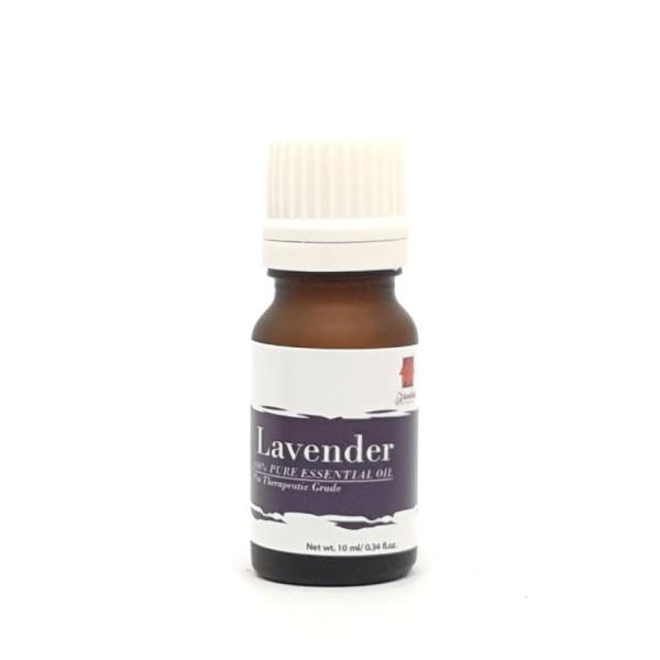 Lavender EO 10ml - mykantan