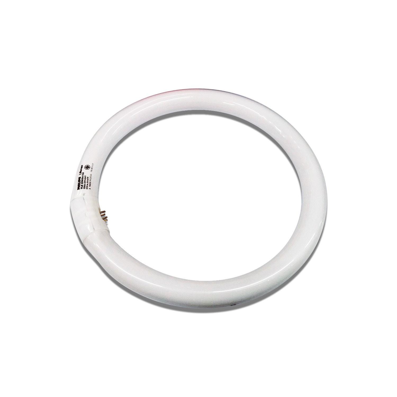 Lampu PHILIPS Lifemax TL-E Ring Cool Daylight 32W 6500K 295mm