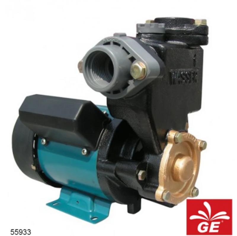 Pompa Wasser PW131E 125W 55933
