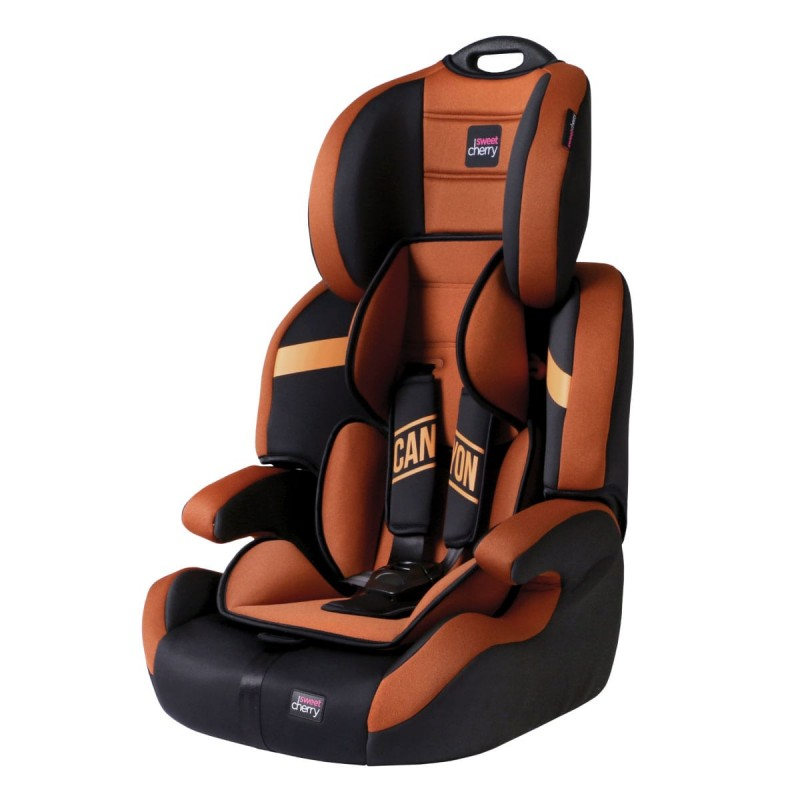 Canyon Child Booster Seat